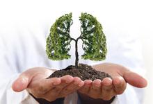 为何秋季要养肺 秋季养肺的重要性